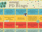 Summer PD on the B-I-N-Go